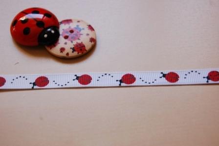 Ladybug ladybird ribbon