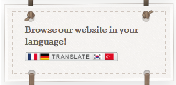 website translator How Nice Project-01