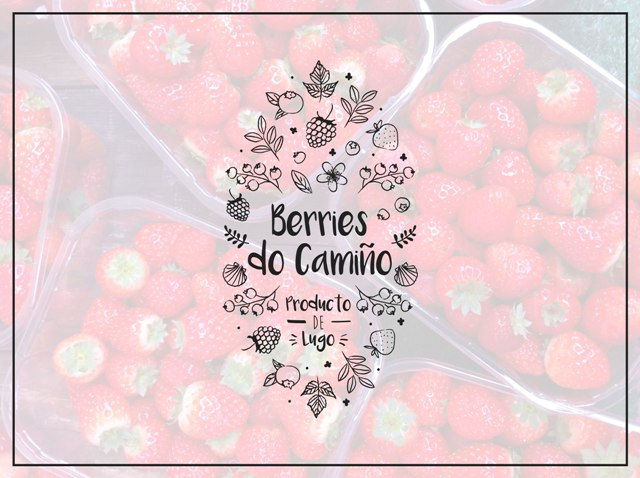 Berries do Camiño
