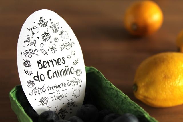 Berries do Camiño